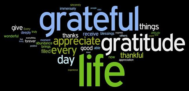 Our deepest gratitude to our customers on this Thanksgiving day
